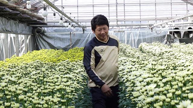 花き栽培者